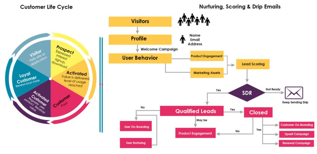 Lead Scoring Strategy and Design, lead scoring automation