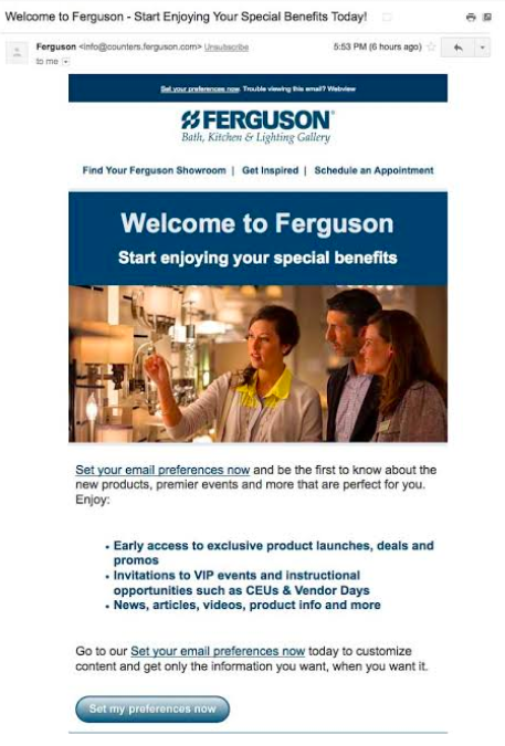 B2B eCommerce example Ferguson
